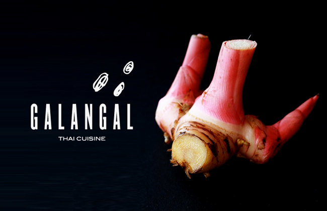Projects archives dinsor for Galangal living